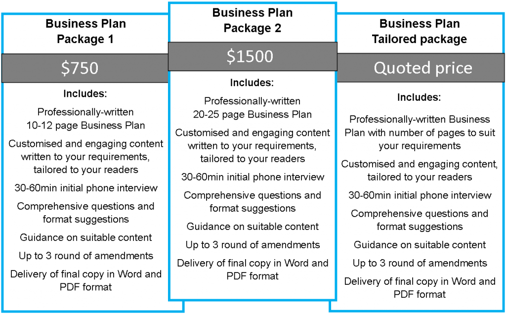 Professional business plan writer. business plan help, professional writer, how to write a business plan
