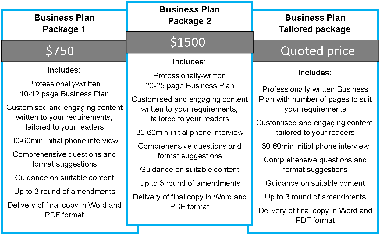 Cost of business plan writer